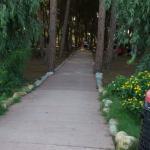 니코테라 비치 빌리지의 사진