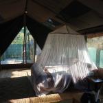 tenda island