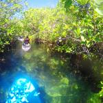 SUP through Mangrove tunnels and pathways!!!