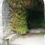Naturally decorated retired lime kiln