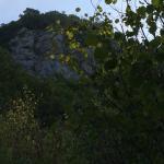 Foto de Camping Les 12 Cols