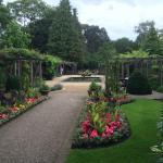 Le jardin aux odeurs