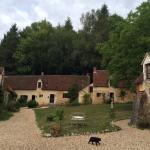 Photo of D'une Ile