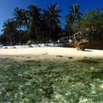 Photo de Flower Beach & Dive Resort Bohol