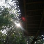Photo of Tao' Kombo Travel Lodge