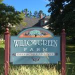 Willowgreen esterno