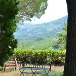 Agriturismo Il Serraglio Foto