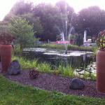 Biotop-Garten