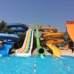 Great fun for all ages and reasonable prices too! Much better than the larger parks as the waiti