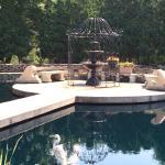 Lovely water garden
