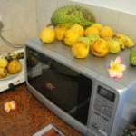 микроволновка и эл плита в маленьком номере - а также фрукты))