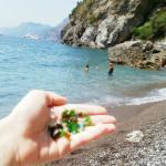 Sea glass on Laurito Beach
