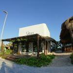 Exterior of the restaurant, next to Yaya beach club