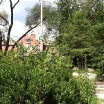 Photo de Homewood Suites by Hilton Boston/Cambridge-Arlington