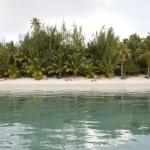 Matriki's beach