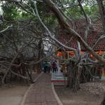 Photo of Khru Pom Guest House