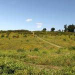 Powdermill Nature Reserve