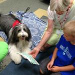 R.E.A.D. Program at Sanibel Public Library (Reading Education Assistance Dogs)