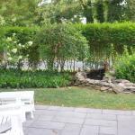 Garden overlooking tranquil fountain