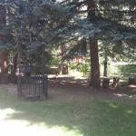 Shadow Mountain Guest Ranch Foto