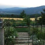 Back gardens, field and mountain view