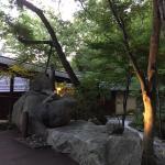なるべく自然のまま魅せる思いがたくさんある温泉旅館です!