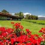 Fergusson Winery and Restaurant