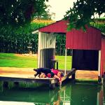 Beaver Creek Farm Cabins/Cottages Image