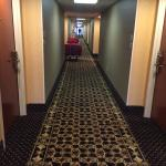 Photo de Hampton Inn Conway