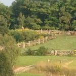 Landscape - Le Baluchon Photo