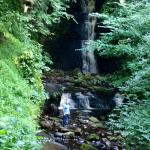 Local waterfalls, great walk after breakfast