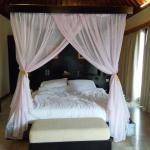 Room Area: Bed