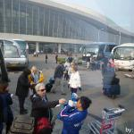 Buses Loading Passengers at the Port of Tianjin, China