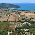 Vinprovningar och -rundturer