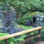 Lovely garden too