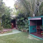 Le petit patio pour s'isoler un peu