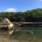 Le Moulin a Maree du Henan