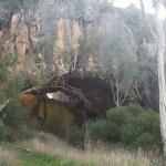 Borenore Karst Conservation Reserve.
