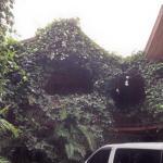 Photo de Historias Lodge