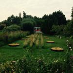la jardin et l'expo