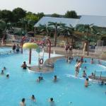 Hartt Island RV Resort & Campground - Pool Area