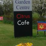 Retford & Gainsborough Garden Centre