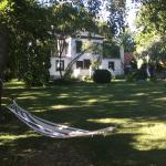 Hallfreda Hotell med parkliknande trädgård