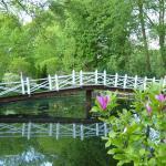 Brücke im Hochzeitspark