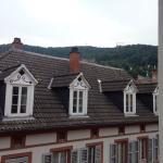 Hotel Goldener Hecht Foto