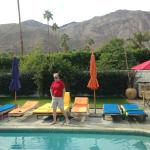 Casa Ocotillo Pool Area and Scenery