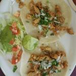 Pollo Asada on fresh corn tortillas with cilantro and onion. (Real tacos)