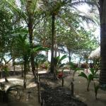 Foto di Little Corn Beach and Bungalow