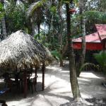 Billede af Little Corn Beach and Bungalow