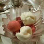 Gorgeous sorbets
